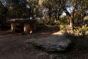 Parc Naturel du Montseny