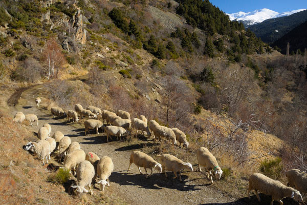viajes a pie y en bicicleta en Occitania